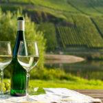 Dégustation Vin Blanc d'Alsace