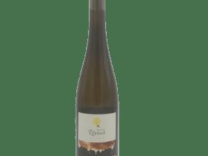 Vignoble du rêveur Alsace Vibrations Riesling Bio 2019